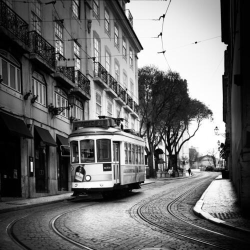 Serie 05 Foto 05