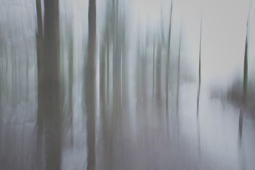018-FotoNat