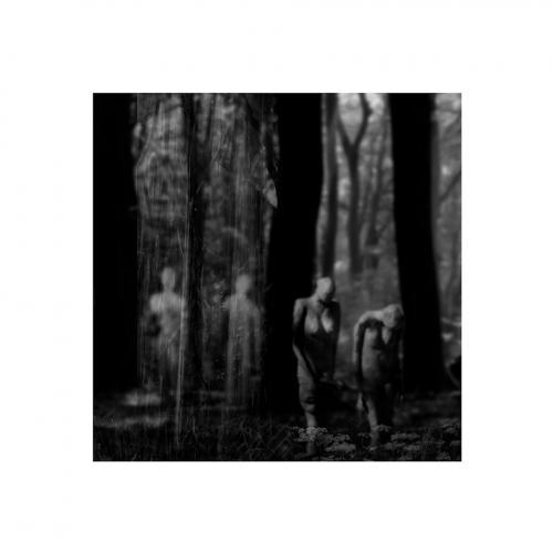 037-FotoNat